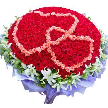 999枝玫瑰 心形 爱情鲜花 表白