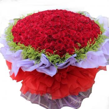 999枝玫瑰 圆形 爱情鲜花