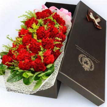 远方的思念-19枝红色康乃馨礼盒