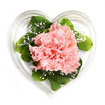 保鲜花 妈妈,我爱您(康乃馨保鲜花)