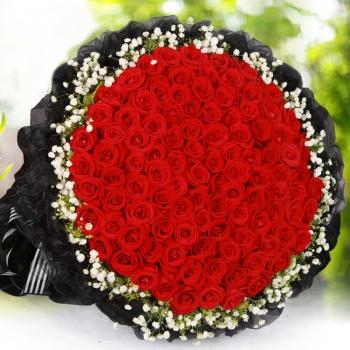 那年花开-99朵红玫瑰