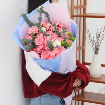 温情祝福-33朵粉康乃馨