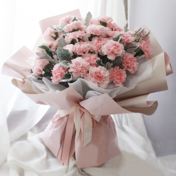 感激-33朵粉色康乃馨
