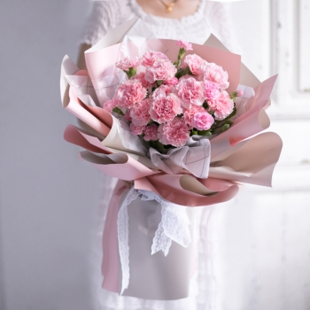 暖暖情意-19朵粉色康乃馨