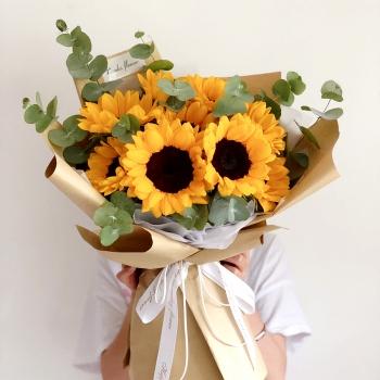拥抱未来-9朵向日葵花束