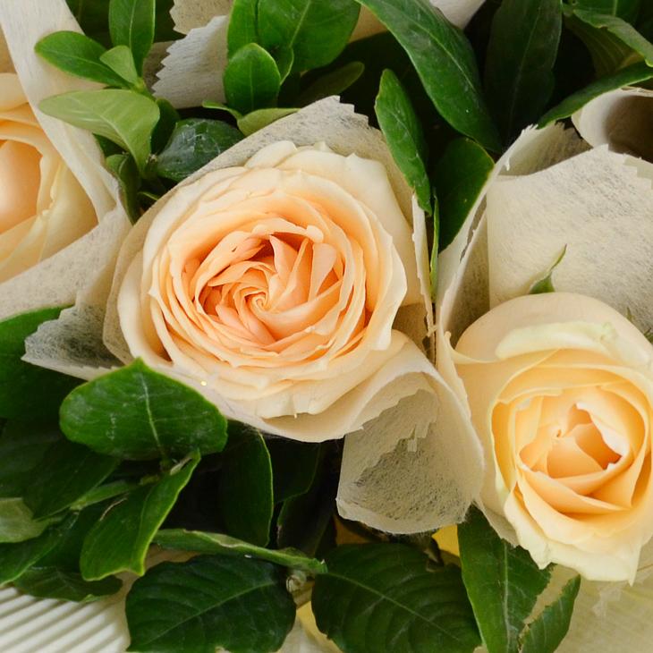香槟色玫瑰花_只为有你 - 郑州鲜花礼品网